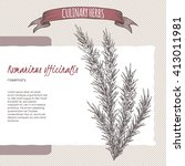 rosmarinus officinalis aka... | Shutterstock .eps vector #413011981