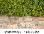 the green ivy on a stone wall ... | Shutterstock . vector #413110555