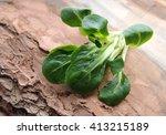 field salad. | Shutterstock . vector #413215189