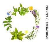 Herb Leaf Garland Of Lavender ...