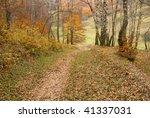 last days of late autumn | Shutterstock . vector #41337031