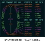 permanent adult international... | Shutterstock .eps vector #413443567