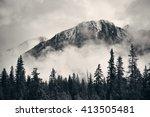 banff national park foggy... | Shutterstock . vector #413505481