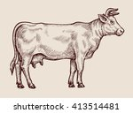 sketch cow. hand drawn vector... | Shutterstock .eps vector #413514481