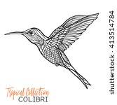 colibri. tropical bird. vector... | Shutterstock .eps vector #413514784