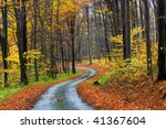 The road through the autumnal park - stock photo