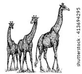 group of giraffes | Shutterstock .eps vector #413694295
