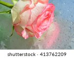 A Rose With Reflection In Water