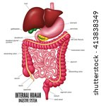the part of internal human... | Shutterstock .eps vector #413838349