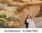 gorgeous wedding couple enjoys...   Shutterstock . vector #413867965