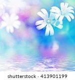 Daisy Flowers Field. Delicate...