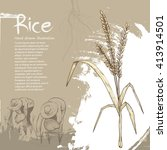 hand drawn illustration of rice.... | Shutterstock .eps vector #413914501