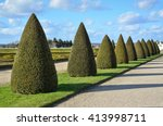 Topiary Trees At Versailles...