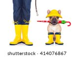 Stock photo dog and owner with rain boots ready to play or have fun together and go for a walk with leash 414076867
