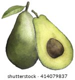 watercolor sketch of an avocado ... | Shutterstock . vector #414079837