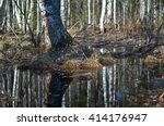 russian forest in early spring. ... | Shutterstock . vector #414176947
