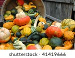 Colorful Assortment Of Gourds...