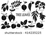 set of nature pictograms  tree... | Shutterstock . vector #414235225