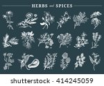 herbs and spices set. hand... | Shutterstock .eps vector #414245059