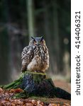 eurasian eagle owl  bubo bubo ... | Shutterstock . vector #414406321