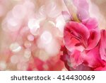 pink flower with pink bokeh... | Shutterstock . vector #414430069