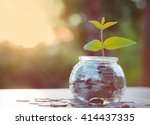 sprout growing on glass piggy...   Shutterstock . vector #414437335