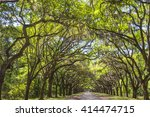 long road lined with ancient... | Shutterstock . vector #414474715