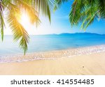 palm and tropical beach | Shutterstock . vector #414554485