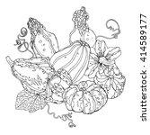 various ornamental pumpkins ... | Shutterstock .eps vector #414589177