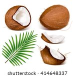 coconuts with leaves. fully... | Shutterstock .eps vector #414648337