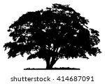 Stock vector tree silhouette on white background 414687091