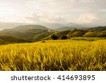 soft focus of rice farm... | Shutterstock . vector #414693895