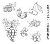 strawberries  grape vine with... | Shutterstock .eps vector #414718555