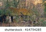 Tumbledown Shack In The Woods