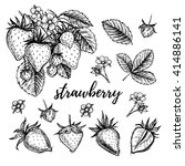 hand drawn vector illustration  ... | Shutterstock .eps vector #414886141
