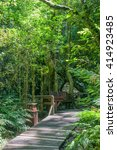 Small photo of GARDEN OF EDEN, SOUTH AFRICA - MARCH 3, 2016: A rustic corner at the Garden Of Eden, a network of boardwalk trails through the Tsitsikama Forest