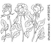 roses  a set of flowers and... | Shutterstock .eps vector #414930391