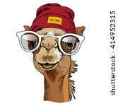 Camel Portrait With A Glasses...