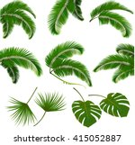 set of palm leaves isolated on... | Shutterstock .eps vector #415052887