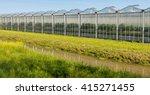 Large Greenhouse On A Sunny Da...
