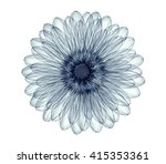 x ray image of a flower ... | Shutterstock . vector #415353361