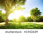 field of grass and trees | Shutterstock . vector #41542639
