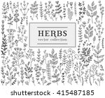 herbs and twigs set for your... | Shutterstock .eps vector #415487185