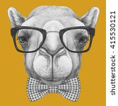portrait of camel with glasses... | Shutterstock . vector #415530121