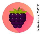 bramble blackberry flat design... | Shutterstock .eps vector #415540219