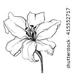 Decorative White Lily Flower I...