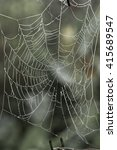 cobweb spider web in natural | Shutterstock . vector #415689547