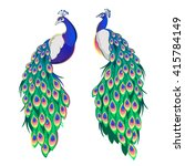 Set Of Two Peacocks Isolated O...