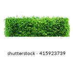 tree bush isolate  trim design ... | Shutterstock . vector #415923739