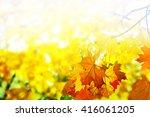 autumn foliage. golden autumn....   Shutterstock . vector #416061205